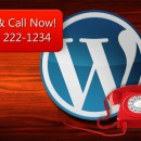 Flashy Click to Call Plugin