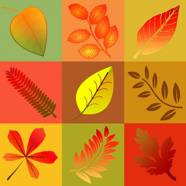 Fall Leaves Graphic Squares.jpg