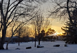 English Ranch Park Winter Sunrise