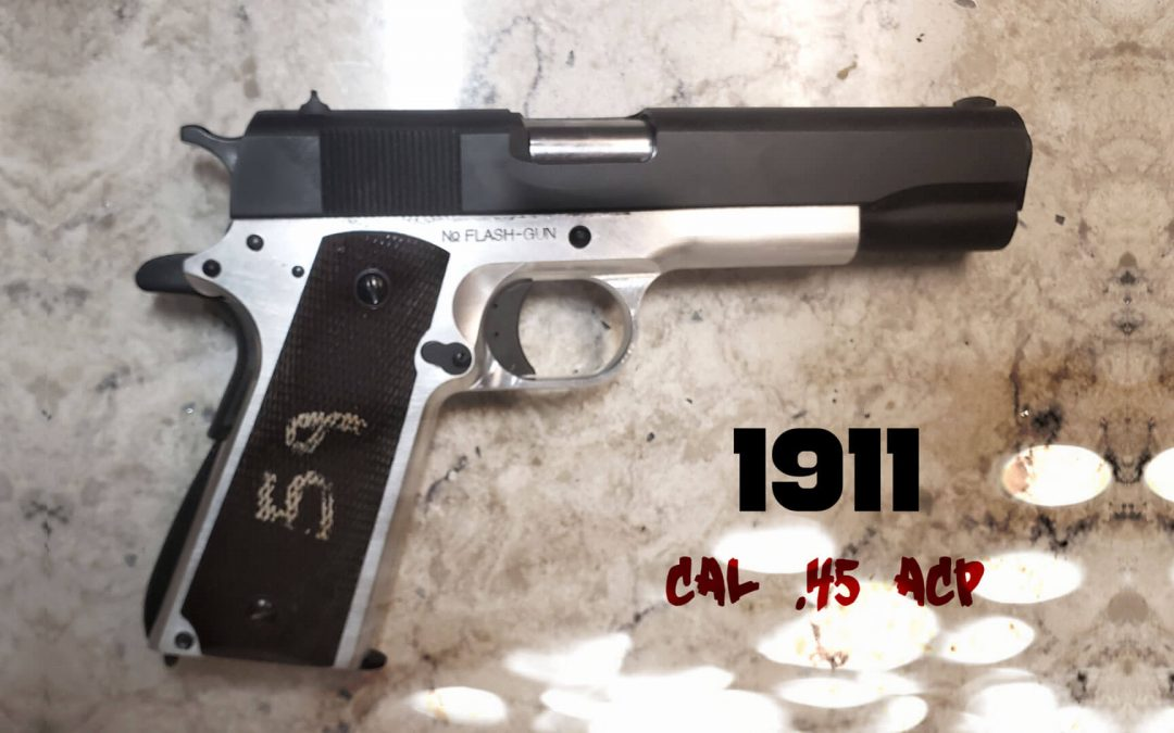 Government 1911 .45 Cal Handgun from Kit